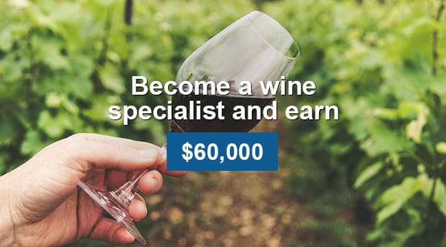 Wine Specialist fun jobs that pay well